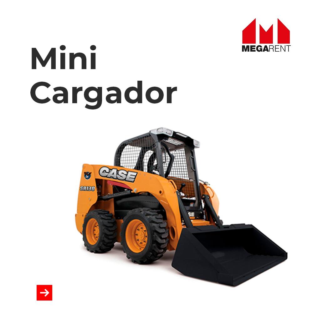Mini Cargador